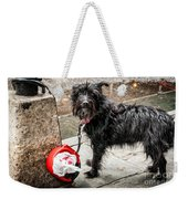 Little Wet Puppy In French Quarter Weekender Tote Bag