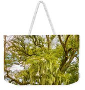Live Oak And Spanish Moss 2 - Paint Weekender Tote Bag