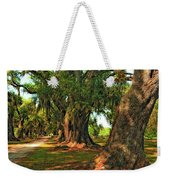 Live Oak Lane Weekender Tote Bag by Steve Harrington