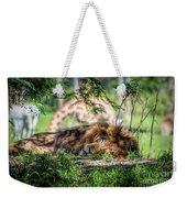 Living In Harmony - Lion Weekender Tote Bag