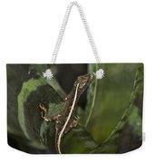 Lizard 2 Weekender Tote Bag