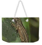 Lizard 3 Weekender Tote Bag