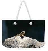 Lizard Rock Weekender Tote Bag