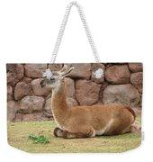 Llama Weekender Tote Bag