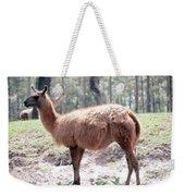 Llamalovely Weekender Tote Bag
