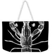 Crawfish In The Dark - Xray Weekender Tote Bag
