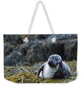 Loch Dunvegan's Harbor Seal Weekender Tote Bag