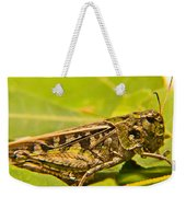Locust In Green Weekender Tote Bag