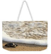 Loggerhead Turtle Hatchling 3 Delray Beach Florida Weekender Tote Bag