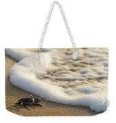 Loggerhead Turtle Hatchling 4 Delray Beach Florida Weekender Tote Bag