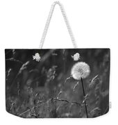Lone Dandelion Black And White Weekender Tote Bag