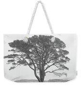 Lone Scots Pine, Crannoch Woods Weekender Tote Bag