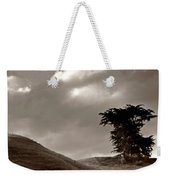 Lone Tree On A New Zealand Hillside Weekender Tote Bag