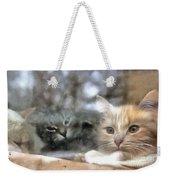 Lonely Kittens Behind The Glass Weekender Tote Bag
