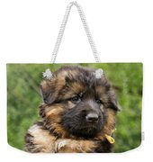 Long Coated Puppy Weekender Tote Bag