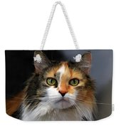 Long Haired Calico Cat Weekender Tote Bag