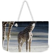 Long Legs - Giraffe Weekender Tote Bag