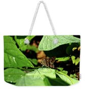 Long Tail Skipper Butterfly 1 Weekender Tote Bag