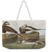 Long Tailed Duck Weekender Tote Bag