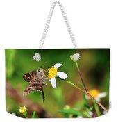 Long-tailed Skipper Butterfly Weekender Tote Bag