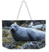 Long Whiskers On A Harbor Seal Weekender Tote Bag