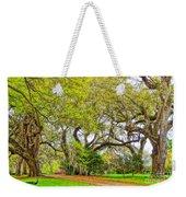 Longwood Plantation In Spring Glory Weekender Tote Bag