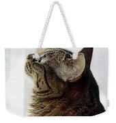 Look Out Window Tabby Cat Weekender Tote Bag
