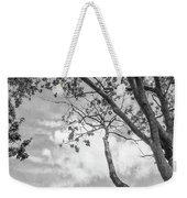 Look Up Into The Sky Weekender Tote Bag