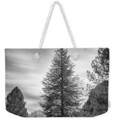Looking For The Sky Into The Woods Weekender Tote Bag