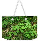 Looking For A Four-leaf Clover Weekender Tote Bag