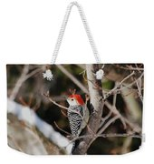 Looking For A Place To Peck Weekender Tote Bag