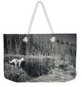 Looking For Beaver Weekender Tote Bag