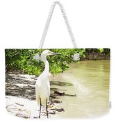 Looking For Lunch Gp Weekender Tote Bag