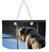 Looking Outside Weekender Tote Bag
