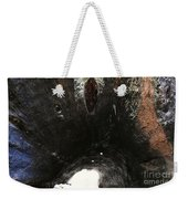 Looking Through The Hollow Trunk Of An Ancient Fallen Sequoia In Kings Canyon California Weekender Tote Bag