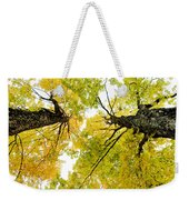 Looking Up At Fall Weekender Tote Bag