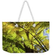 Looking Up To A Beautiful Sunglowing Fern In A Tropical Forest Weekender Tote Bag