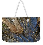 Looking Up While Looking Down Weekender Tote Bag