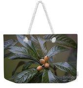 Loquat Fruit Weekender Tote Bag