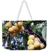 Loquats In The Tree 1 Weekender Tote Bag