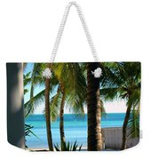 Louie's Backyard Weekender Tote Bag by Susanne Van Hulst