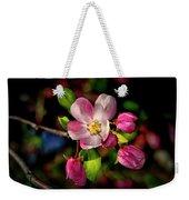 Louisa Apple Blossom 001 Weekender Tote Bag
