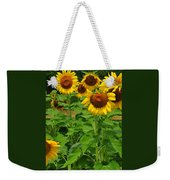 Louisa, Va. Sunflowers 3 Weekender Tote Bag