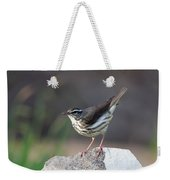 Louisiana Waterthrush Weekender Tote Bag
