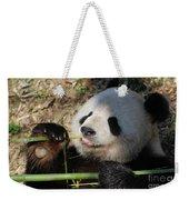 Lovable Giant Panda Bear With Big Paws Weekender Tote Bag