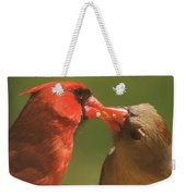 Love Is In The Air Cardinals Square Weekender Tote Bag