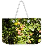 Lovely Apples On The Tree Weekender Tote Bag