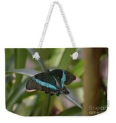 Lovely Blue And Black Emerald Swallowtail Buterfly Weekender Tote Bag