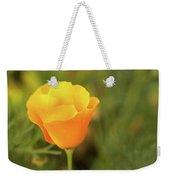 Lovely Buttercup Flower. Weekender Tote Bag