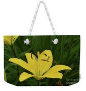 Lovely Close Up Of A Yellow Lily In Full Bloom Weekender Tote Bag